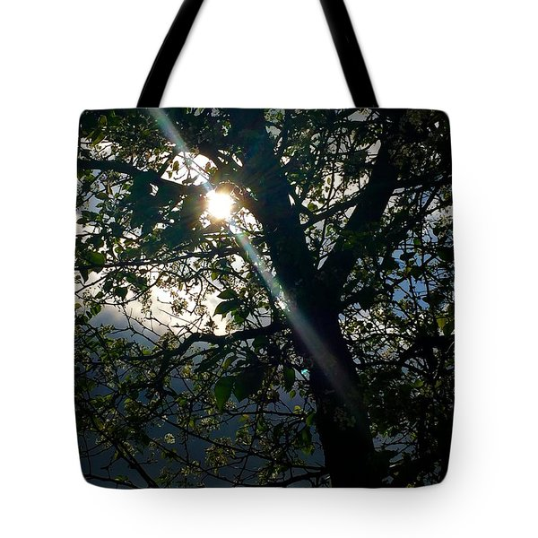 Coming Out Of The Dark Tote Bag