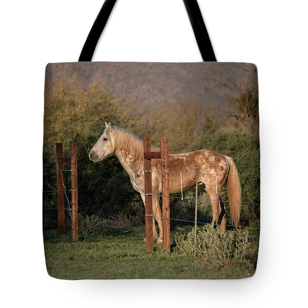 Tote Bag featuring the photograph Coming Through The Fence by Teresa Wilson