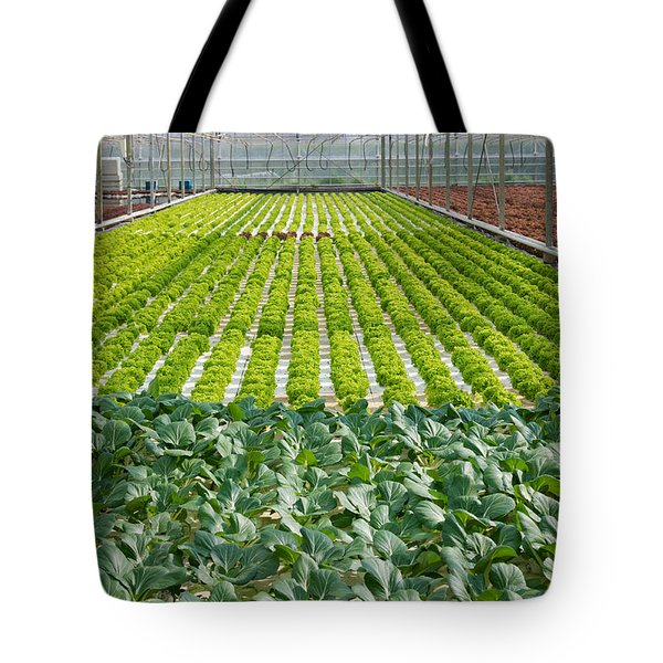 Tote Bag featuring the photograph Commercial Greenhouse Interior by Hans Engbers