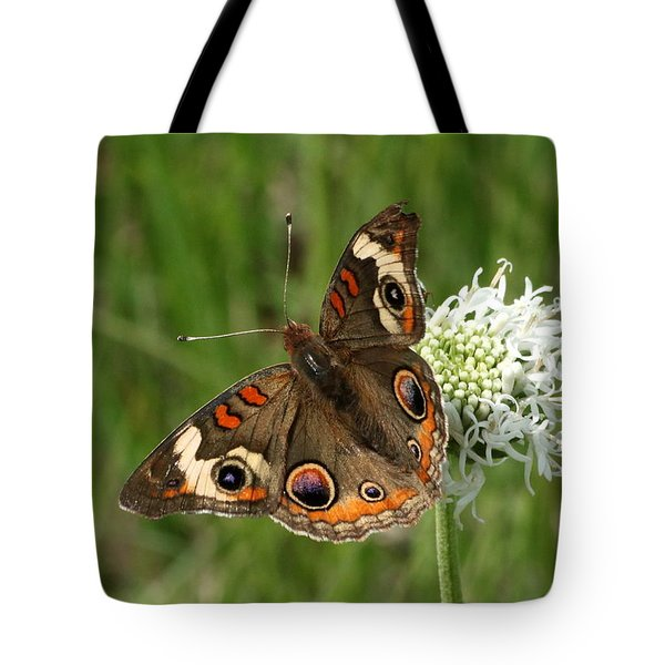 Common Buckeye Butterfly On Wildflower Tote Bag by Sheila Brown