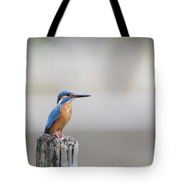 Common Kingfisher 3 Tote Bag