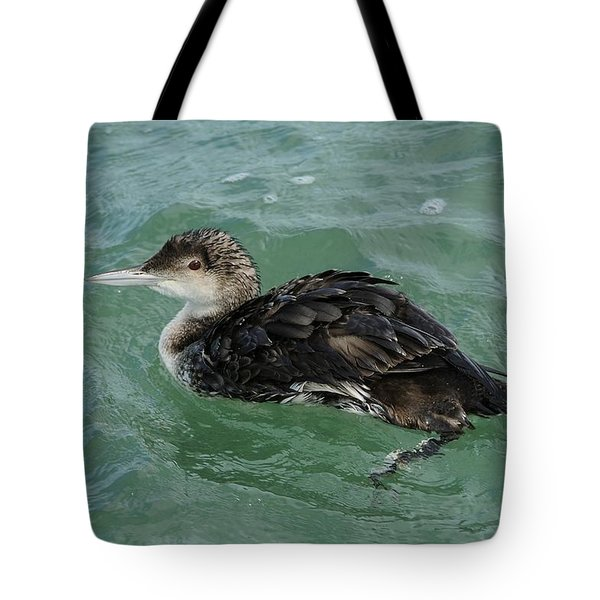 Tote Bag featuring the photograph Common Loon In Winter by Bradford Martin