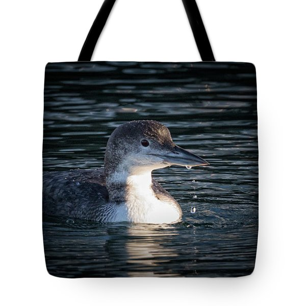 Tote Bag featuring the photograph Common Loon by Randy Hall