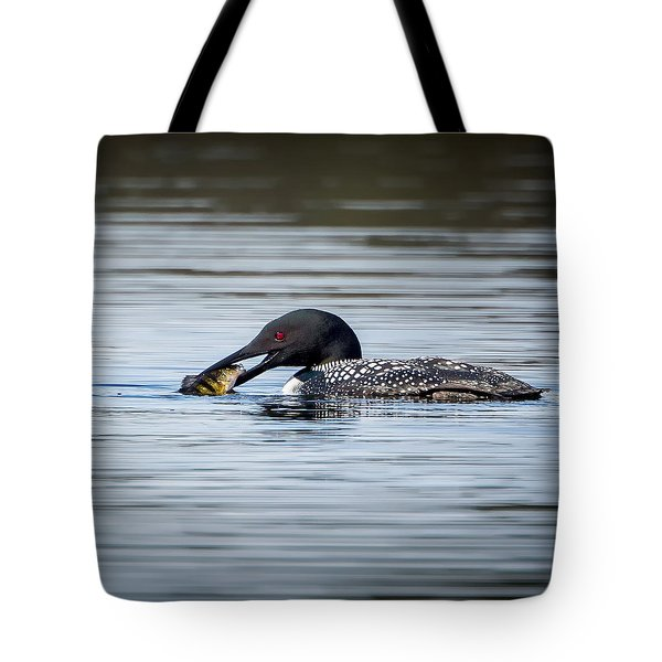 Common Loon Square Tote Bag by Bill Wakeley