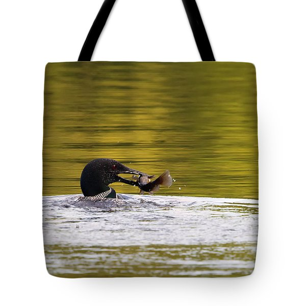 Common Loon With Fish Tote Bag