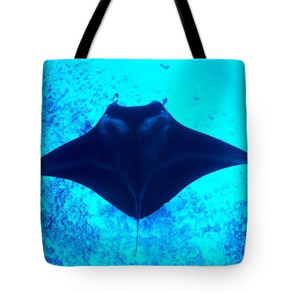 Common Manta Ray Tote Bag by Dave Fleetham - Printscapes