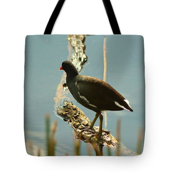 Tote Bag featuring the pyrography Common Moor Hen by Sally Sperry