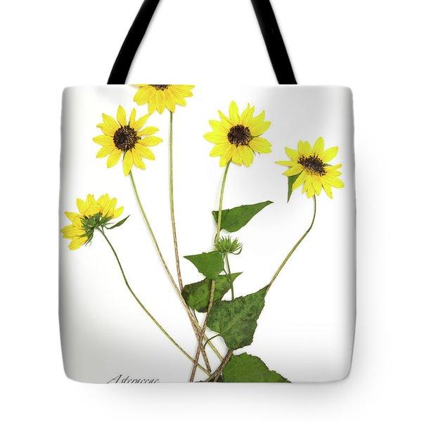Common Sunflower Tote Bag