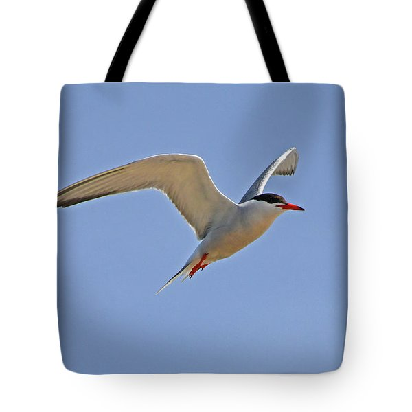 Common Tern Tote Bag