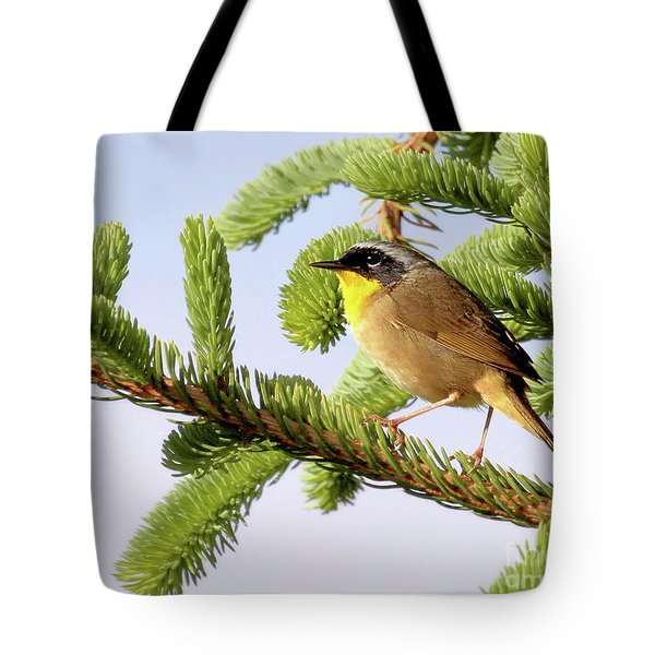 Common Yellow-throat Tote Bag