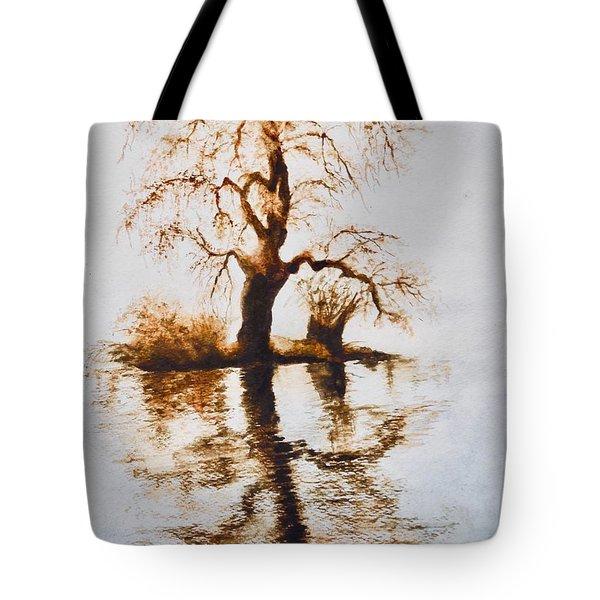 Como Lake Reflections Tote Bag