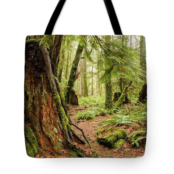 Comox Valley Forrest-3 Tote Bag