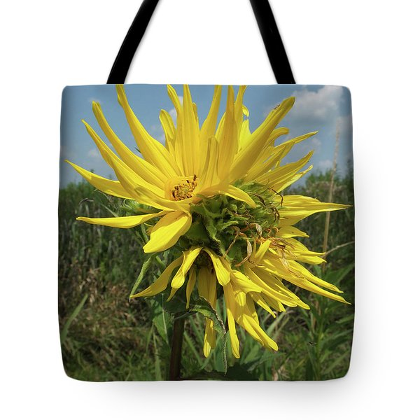 Compass Plant Tote Bag by Scott Kingery
