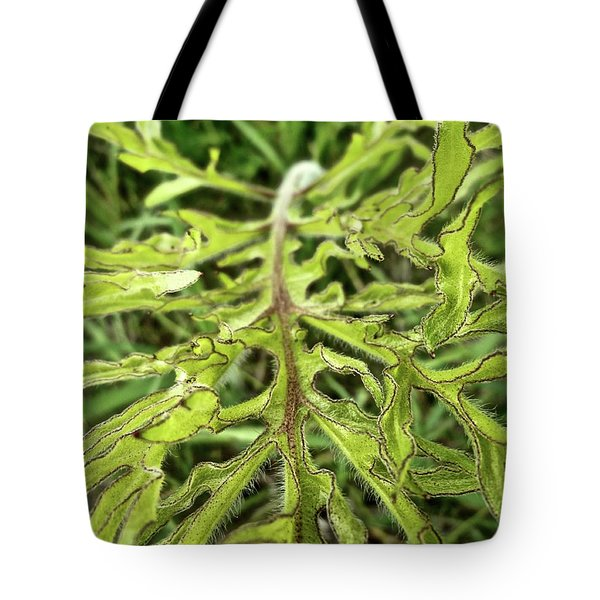 Compass Plant Tote Bag