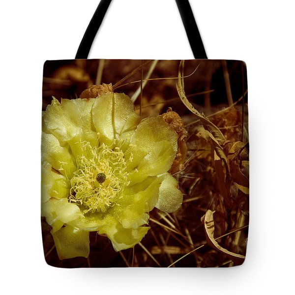 Complementary Colors Tote Bag by Bob Mintie