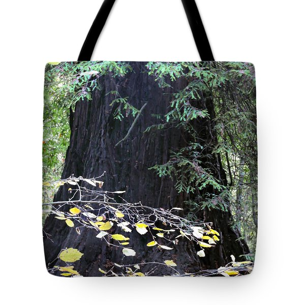 Complementary  Tote Bag