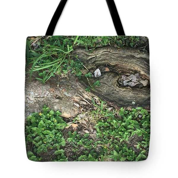 Composition In Trees Tote Bag
