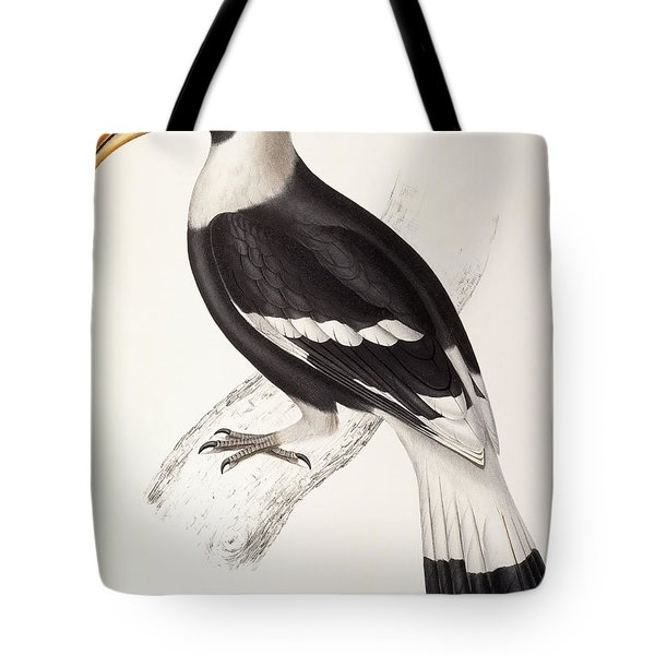 Concave Hornbill Tote Bag by John Gould