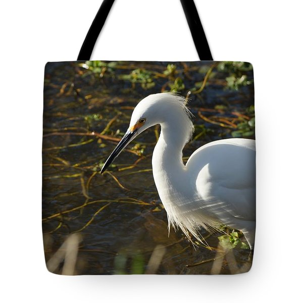 Concentration Tote Bag by Michael Courtney