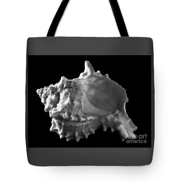 Conch Shell Profile Tote Bag