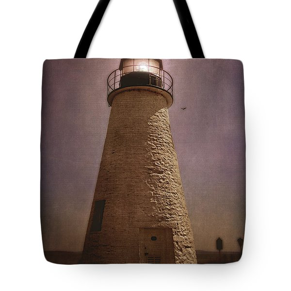 Tote Bag featuring the photograph Concord Point Lighthouse  by Trina  Ansel