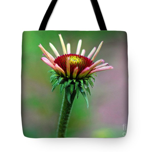Coneflower Bloom Tote Bag