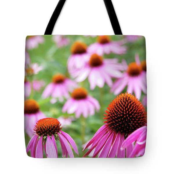 Coneflowers Tote Bag