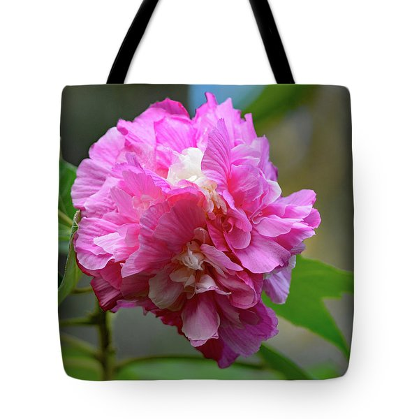 Confederate Rose Tote Bag by Jimmie Bartlett