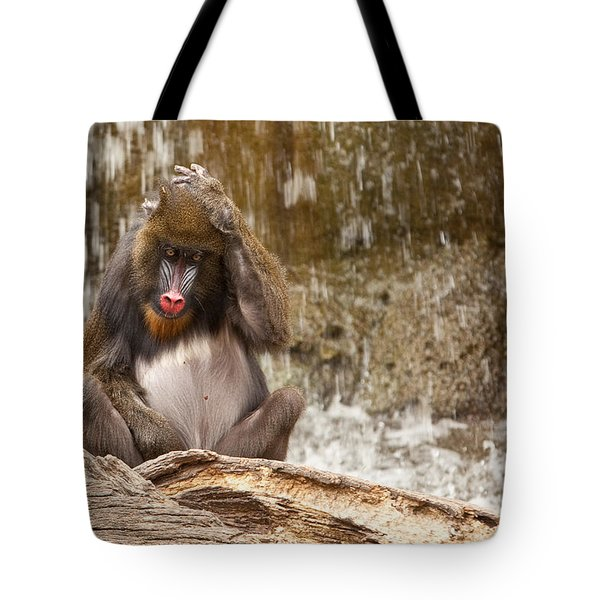 Confusion Tote Bag by Jonas Wingfield
