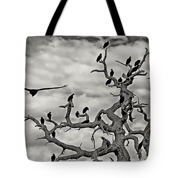Congress Of Vultures Tote Bag