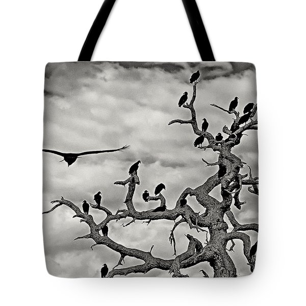 Congress Of Vultures Tote Bag