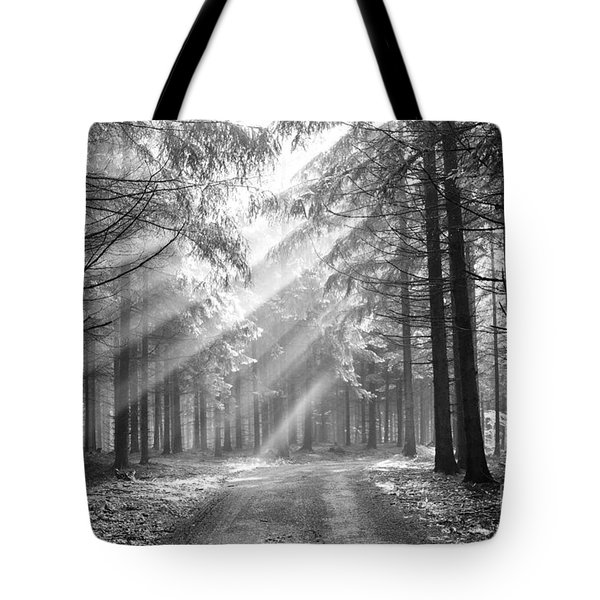 Conifer Forest In Fog Tote Bag by Michal Boubin