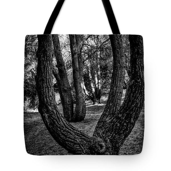 Tote Bag featuring the photograph Conjoined by Joseph Hollingsworth