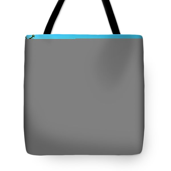 Tote Bag featuring the photograph Conley Road Winter  by Tom Jelen