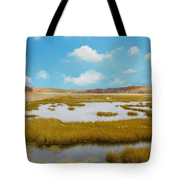 Connecticut Salt Water Marsh Tote Bag