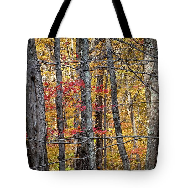 Connecticut Tote Bag