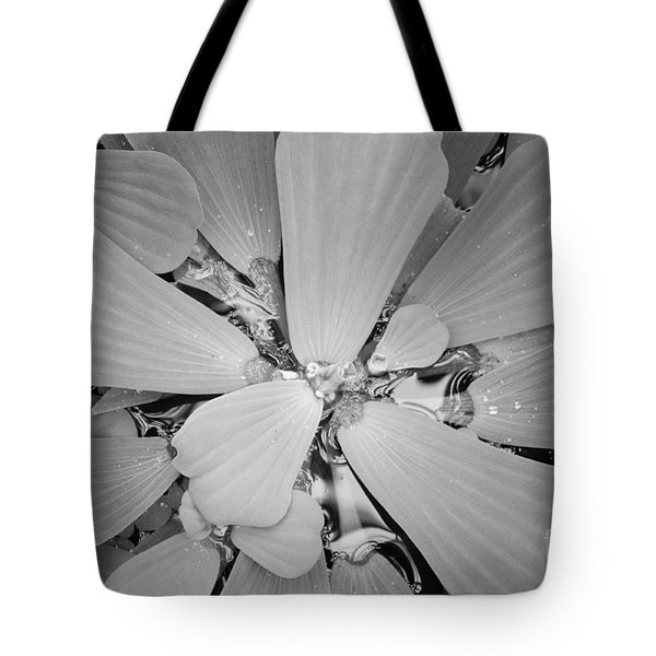 Conservatory Nature In Black And White 1 Tote Bag by Carol Groenen