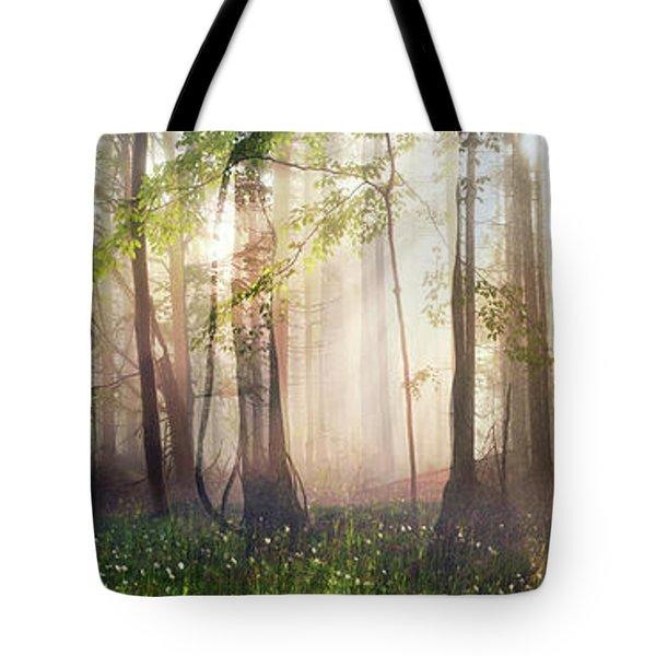 Constancy Tote Bag