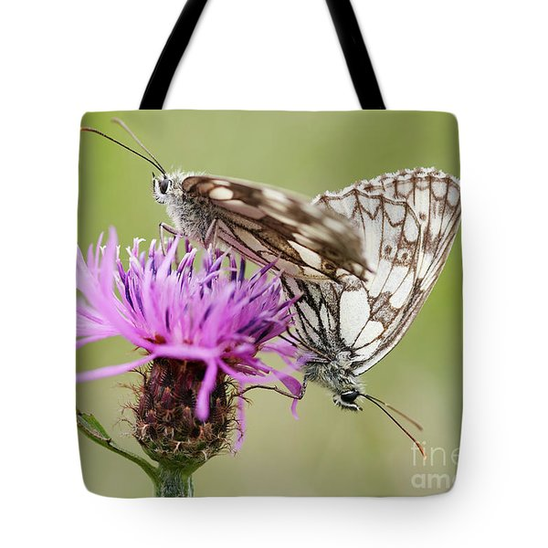 Contact - Butterflies On The Bloom Tote Bag by Michal Boubin