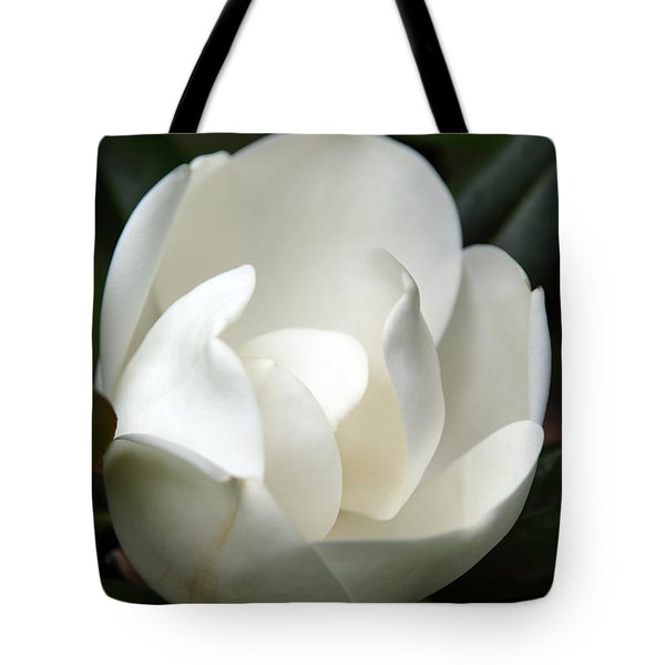 Container Tote Bag by Amanda Barcon