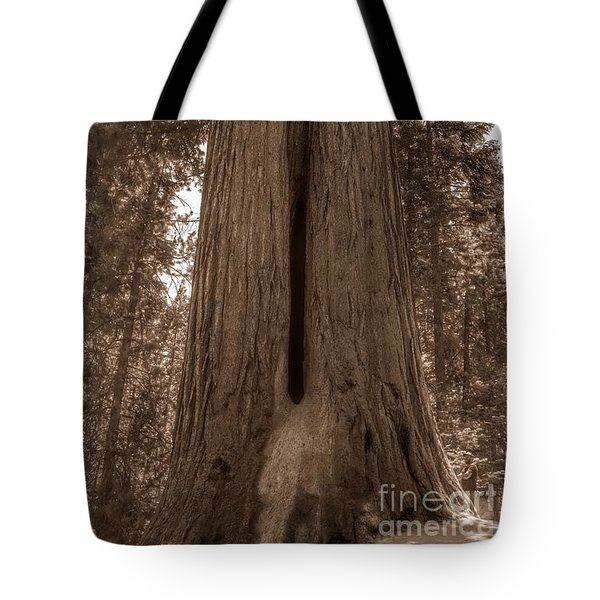 Contemplating Greatness Tote Bag
