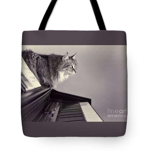 Contemplating Memory Tote Bag