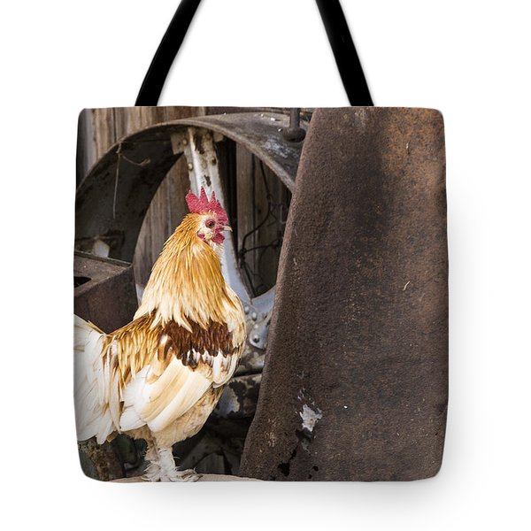Contemplating Rust Tote Bag