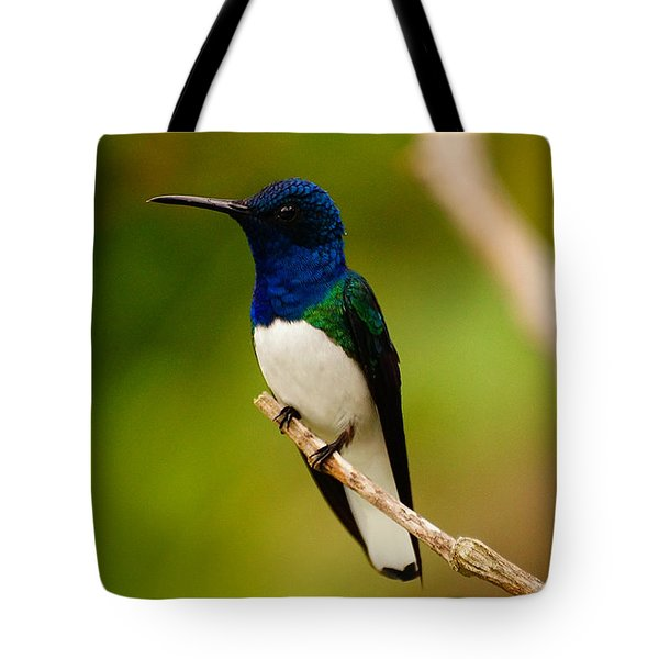 Contemplation Tote Bag by Blair Wainman