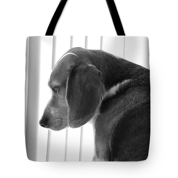 Contemplative Beagle Tote Bag