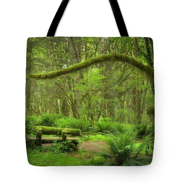 Contemplative Rain Forest Tote Bag