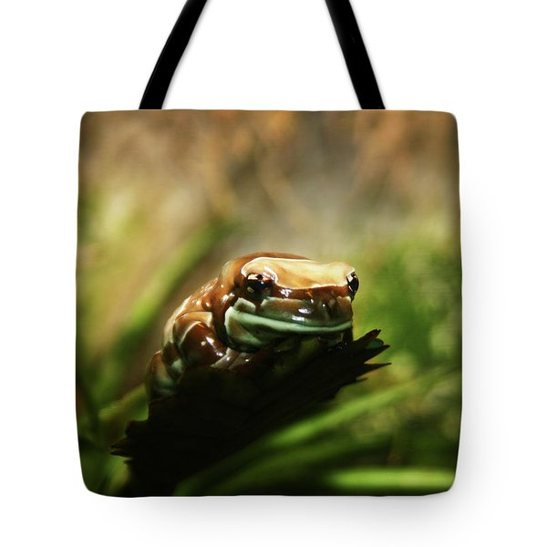 Tote Bag featuring the photograph Content by Anthony Jones