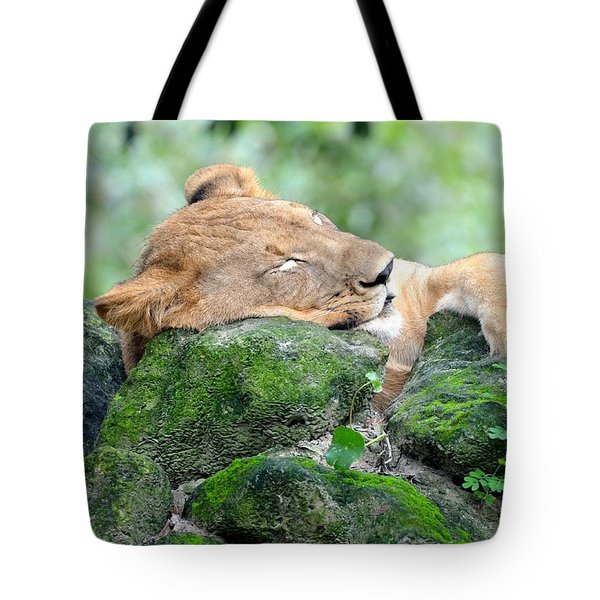 Contented Sleeping Lion Tote Bag by Richard Bryce and Family