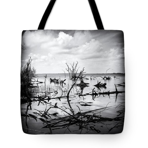 Contrast Tote Bag