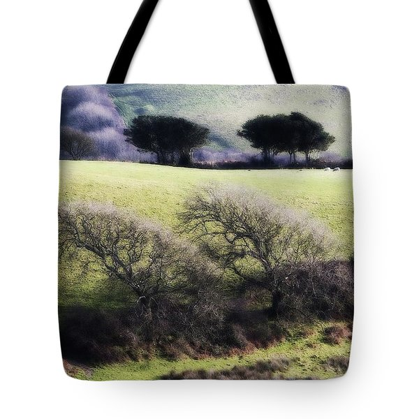 Contrast Of Trees Tote Bag